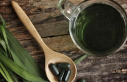 Twórca zielonego soku