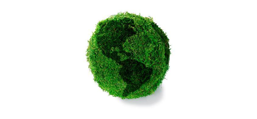 Kilka prostych sposobów jak być eko