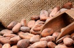 Kakao - napój, który w naturalny sposób poprawia samopoczucie.