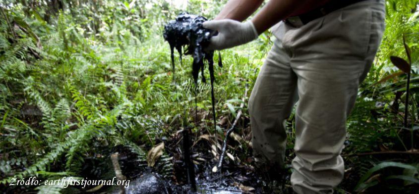 Śmierć w Amazonii - cena jaką płacimy za dobra materialne.