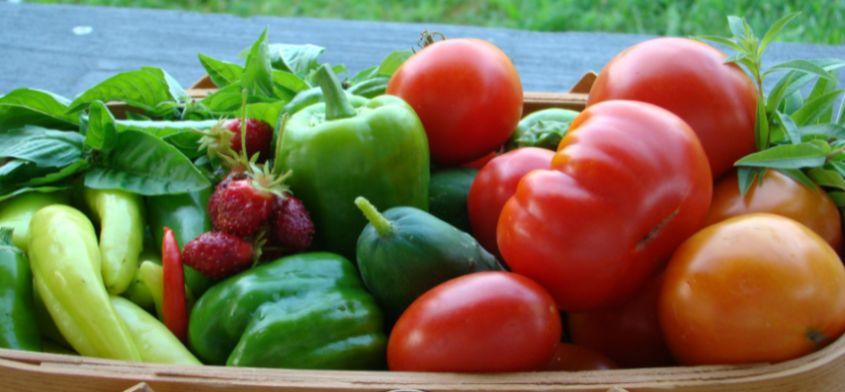 Pokarmy pomagające zachować równowagę energetyczną
