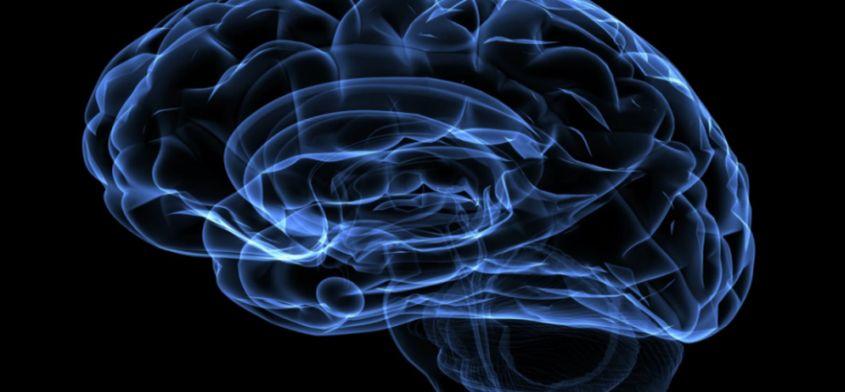 Światowy Tydzień Mózgu: 10-16 marca 2014. Poznaj moc swojego umysłu...