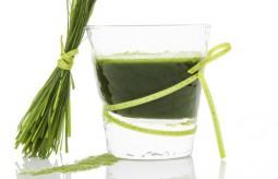 Dlaczego sok z młodego jęczmienia jest bardzo zdrowy?