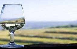 Przepis na wino ziołowe na wzmocnienie
