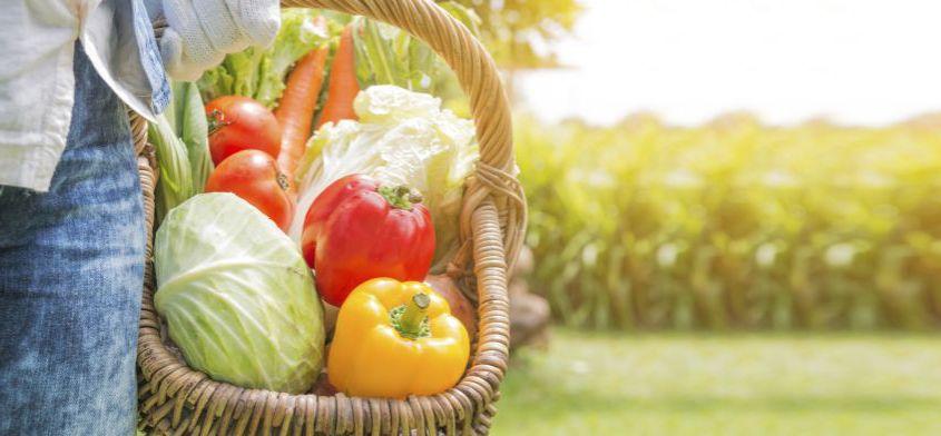 jesienne warzywa sezonowe