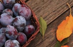 4 powody dla których warto jeść śliwki codziennie