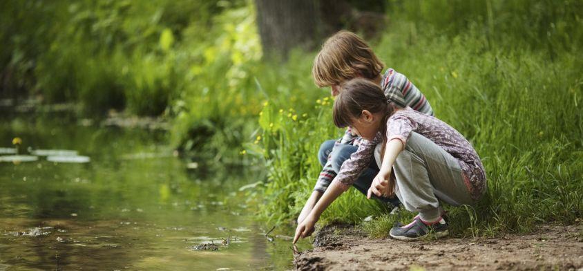 Jak rozbudzić w dziecku fascynację przyrodą?