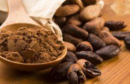 Najlepsze kakao – surowe, nieodtłuszczone