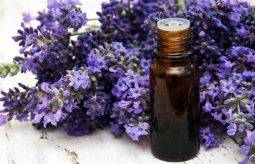 Aromaterapia – dlaczego warto korzystać z olejków eterycznych?