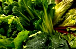 5 przepisów na ZDROWE I SMACZNE dania z zielonych warzyw